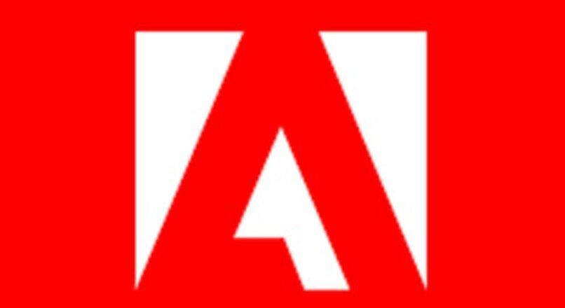 #shorts Adobe Forms não traduz